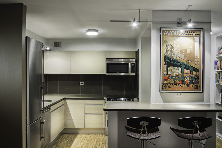 MOLSON Arch » Chicago Kitchen Renovation